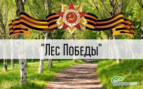 """Закладка """"Леса Победы"""" на территории проекта"""